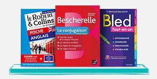 Dictionnaires et Langues
