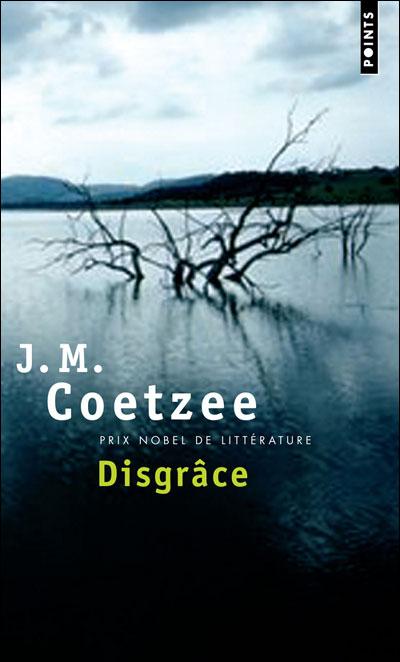 essays on disgrace j m coetzee