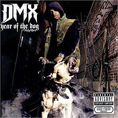 dmx year