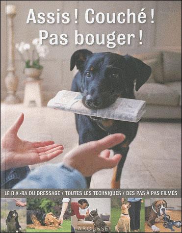 Eduquer son chien pour les nuls ! 9782035838865