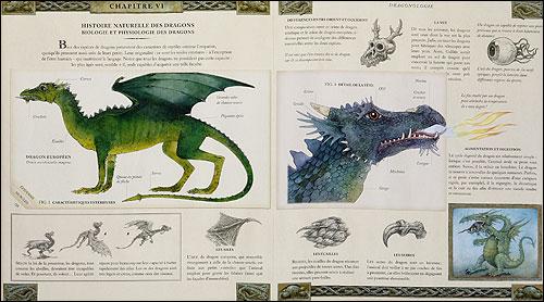Dragonologie, l'encyclopédie des dragons 9782745913593_1