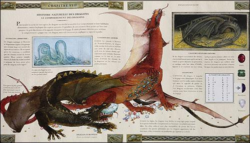 Dragonologie, l'encyclopédie des dragons 9782745913593_2